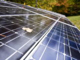Solar energy: Everything You Need To Know